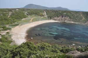 Sardiniens Westen – Prächtige Flora, Geier, blaues Meer, Türme und Klippen