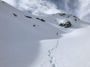 Naturbeobachtungs-Schneeschuhtour über Silvester in Bivio