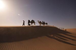 Marokkos Süden: Kameltrekking über Berge und Dünen am Rande der Sahara