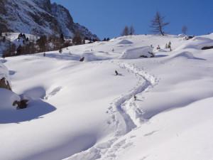 DSC06104 Val Viola_Tagestour