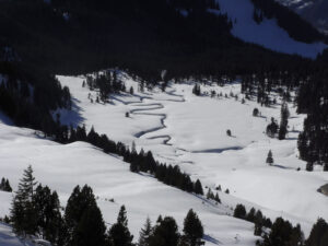 Schneeschuh-Schönwetter-Tagestour am 23. Februar 2020, Selamatt (SG)