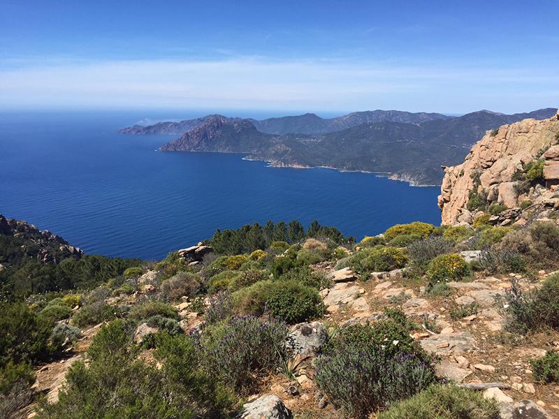4_Korsika