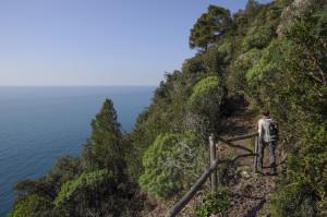 Palazzi, Befestigungen, Meer und Natur: Frühlingswandern um Genua