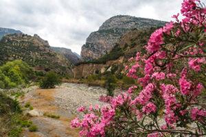 Pollino - Kalabrien von Küste zu Küste