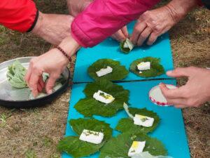 Kurs: Wildpflanzen erwandern, bestimmen und kochen (GL)