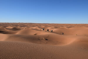 Wander-/Kameltrekking Südmarokko neu: Berge, Iriki und Sahara-Dünenmeer